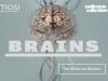 Brains exhibition, Wellcome Collection
